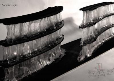 bioplastic morphologies2